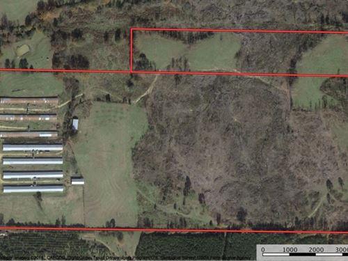 Land For Sale In Neshoba County, Ms : Philadelphia : Neshoba County : Mississippi