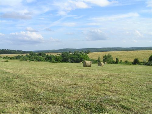Creek, Lake, Owner Finance : Dunlap : Sequatchie County : Tennessee