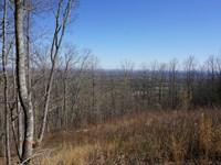 Views Of Watts Bar Lake : Grandview : Rhea County : Tennessee