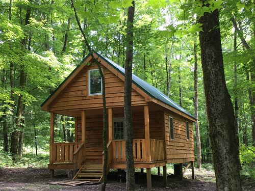 Camp Fish Creek : Williamstown : New York County : New York