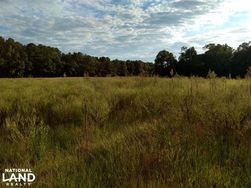 Farrington Point Road : Chapel Hill : Chatham County : North Carolina