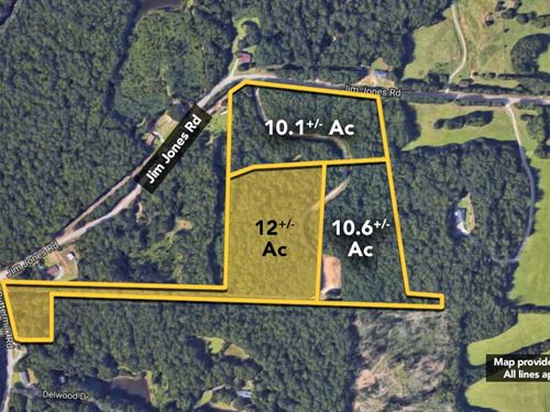 12.0 +/- Ac Of Land On Jim Jones : Tuscaloosa : Alabama
