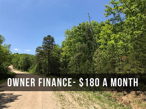 Private 8 Acres With Timber : Birch Tree : Shannon County : Missouri