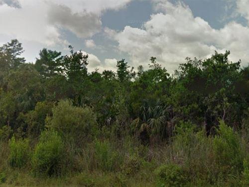 Collier County, Fl $12,000 Neg : Collier : Florida