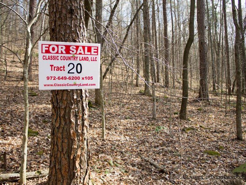 Chestnut Oak Ridge Tract 20 : Mt Vernon : Rockcastle County : Kentucky