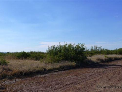 Cochise County Tract 667 : Douglas : Cochise County : Arizona
