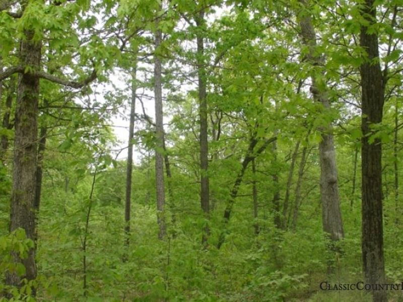 Rogue Creek Tract 139 : Potosi : Washington County : Missouri