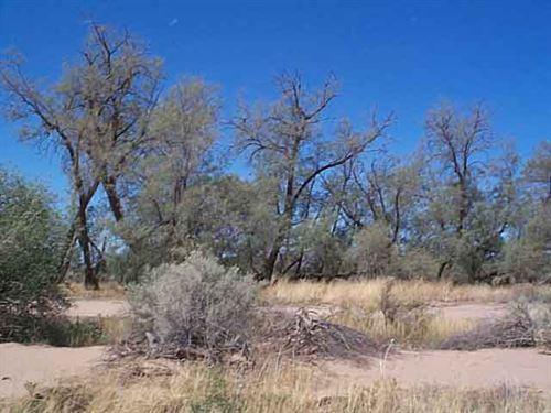Wanna Get Away : Eloy : Pinal County : Arizona