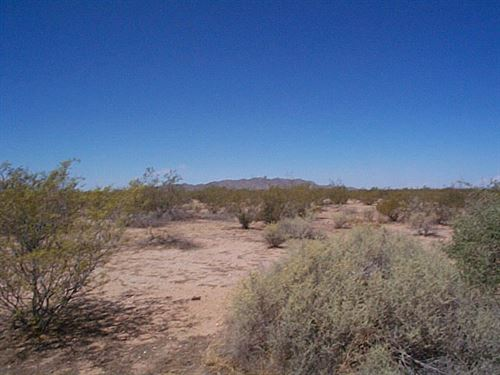 Amazing Desert Location : Eloy : Pinal County : Arizona