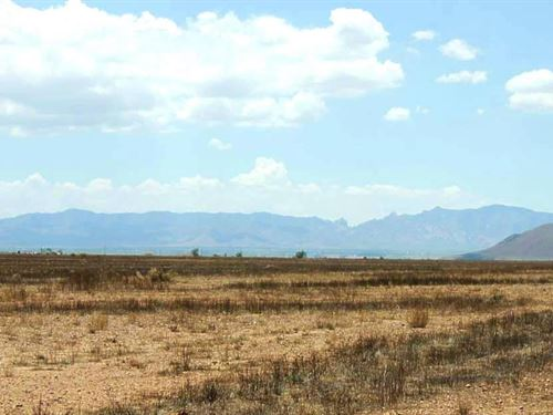 1 Acres In Willcox, AZ : Willcox : Cochise County : Arizona