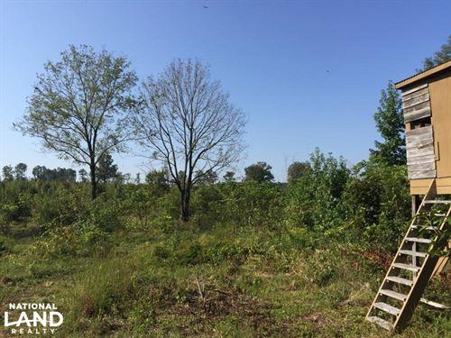 Old Camden Road Acreage With Home : McBee : Darlington County : South Carolina