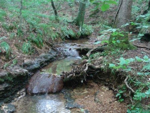 Tennessee, Wayne County : Hohenwald : Wayne County : Tennessee