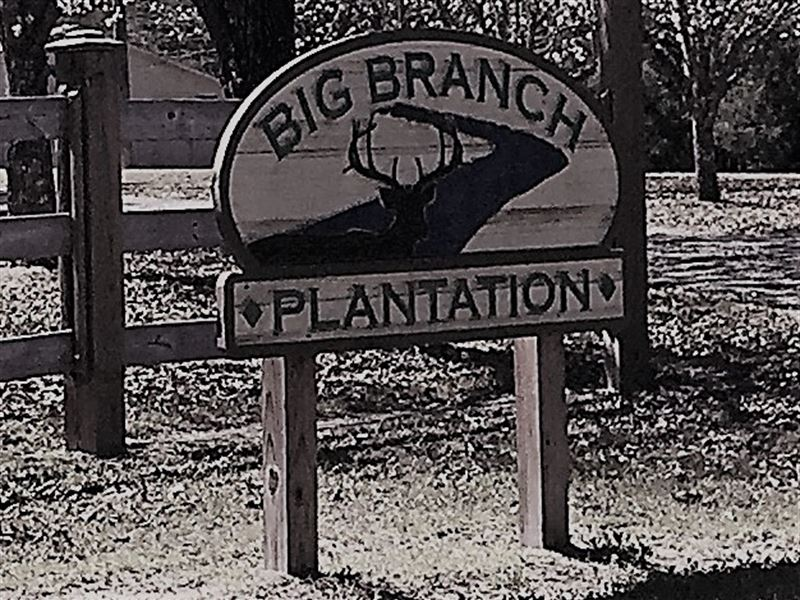 Big Branch Plantation : Jeffersonville : Twiggs County : Georgia
