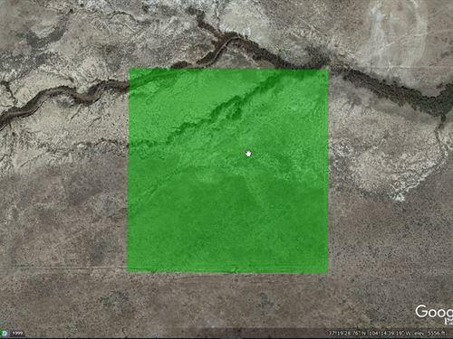 40 Acres For Sale In Model, CO : Model : Las Animas County : Colorado