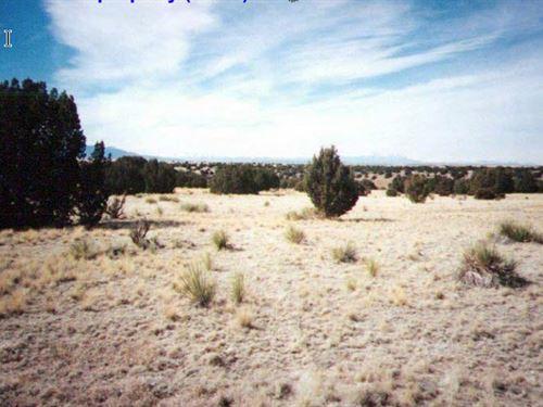 41.21 Acres In Trinchera, CO : Trinchera : Las Animas County : Colorado