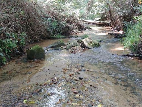 152 Acres Pittsylvania County Va : Callands : Pittsylvania County : Virginia