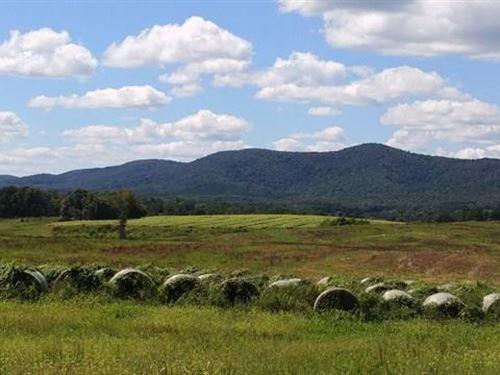 172+ Acres Rocky Mount, Va : Rocky Mount : Franklin County : Virginia