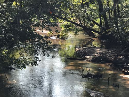 99Ac River Tract With Well & Septic : Buffalo : Union County : South Carolina