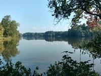 Lake Sinclair & Mature Timber : Milledgeville : Baldwin County : Georgia