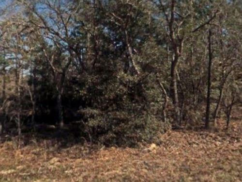 Putnam County, Fl $18,700 Neg : Hawthorne : Putnam County : Florida