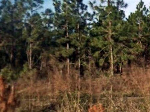 Putnam County, Fl $77,000 Neg : Palatka : Putnam County : Florida
