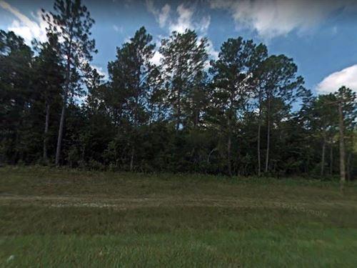 .92 Acres In Bonifay, FL : Bonifay : Holmes County : Florida