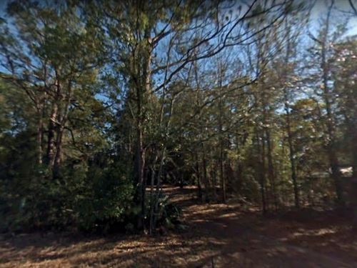 .31 Acres In Port Saint Joe, fl : Port Saint Joe : Gulf County : Florida