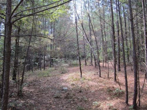 19.15 Acres In Marshall County : Holly Springs : Marshall County : Mississippi