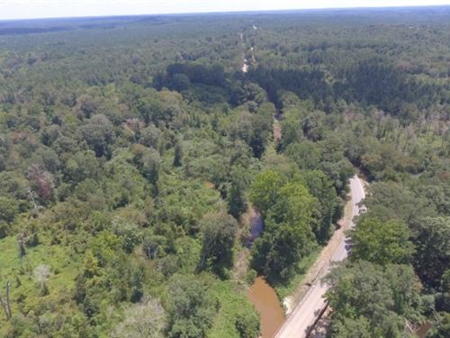 126 Acres In Neshoba County : Philadelphia : Neshoba County : Mississippi