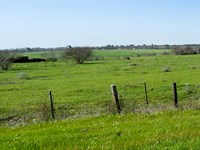 50.53 Acres Fm 2821 : Huntsville : Walker County : Texas