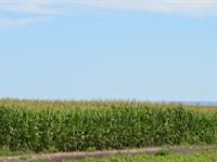 Reyher Amity Farm : Lamar : Prowers County : Colorado