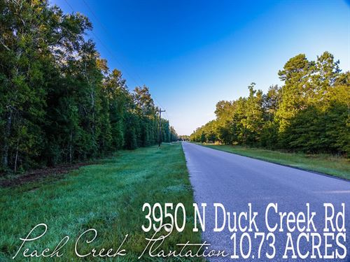 10.73 Acres In Montgomery County : Cleveland : Montgomery County : Texas