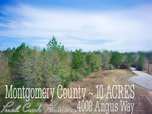 10.01 Acres In Montgomery County : Cleveland : Montgomery County : Texas