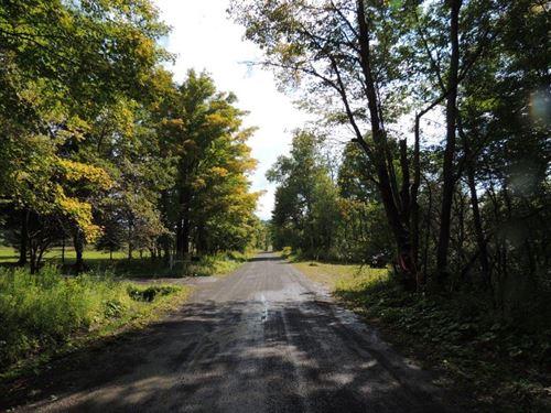 Farm Estate Liquidation : Hartwick : Otsego County : New York
