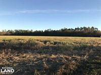 Sunset Farm & Ranch : Atmore : Escambia County : Alabama