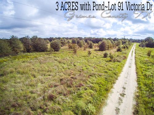 3 Acres In Grimes County : Bedias : Grimes County : Texas