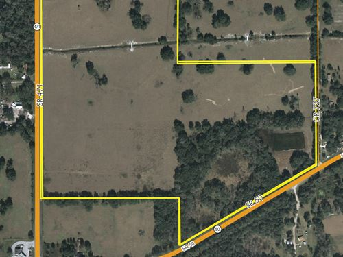 Sumter County Ag Land 100 Ac Sr 50 : Webster : Sumter County : Florida