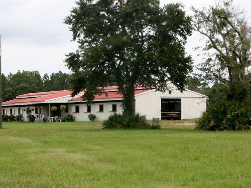 40.45 Acre Horse Farm : Fernandina Beach : Nassau County : Florida
