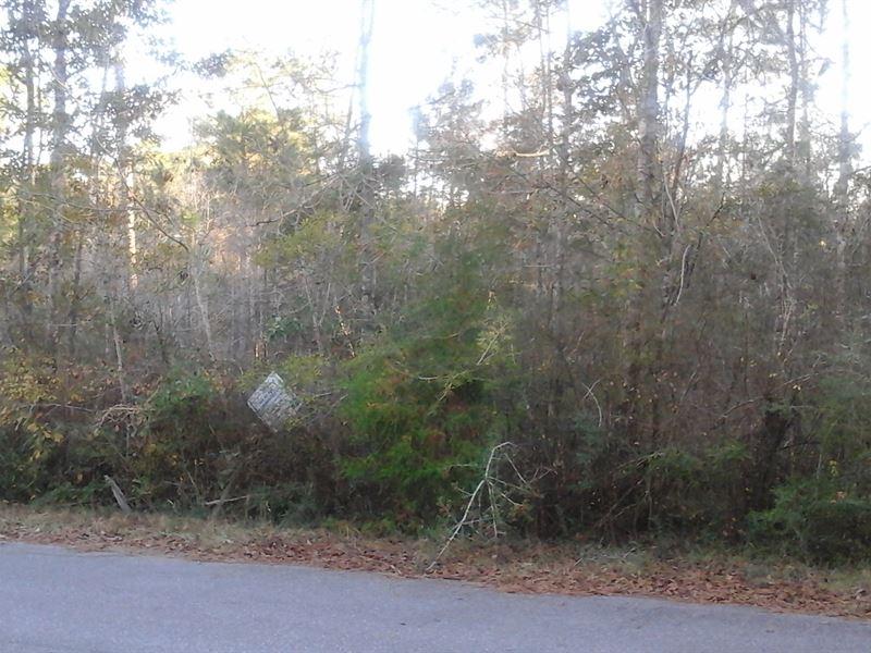 .4 Acres In Milton, FL : Milton : Santa Rosa County : Florida