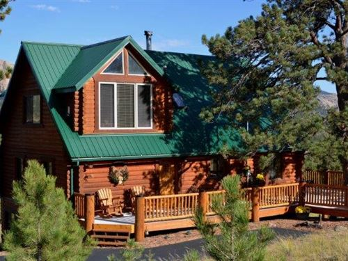 The Treasure At Dog Head : Florissant : Teller County : Colorado