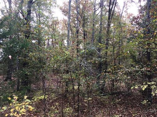 3.67 Acre Lot in Arnoldsburg Estat : Conway : Faulkner County : Arkansas