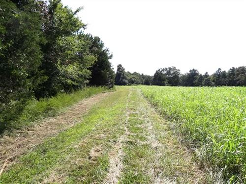 Price Reduced, 80 Acre Recreat : Pangburn : Cleburne County : Arkansas