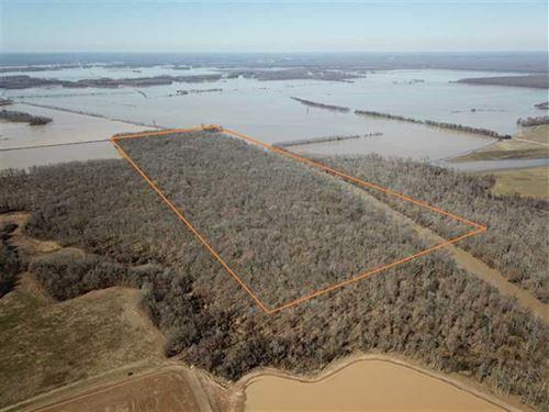 120 Acres Arkansas Flooded Gre : Alicia : Lawrence County : Arkansas
