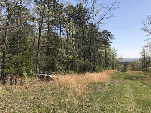40 Acres of Timberland : Shirley : Van Buren County : Arkansas