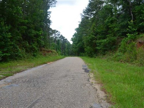 362.5 Acres Timber And Hunting Lan : D'lo : Simpson County : Mississippi