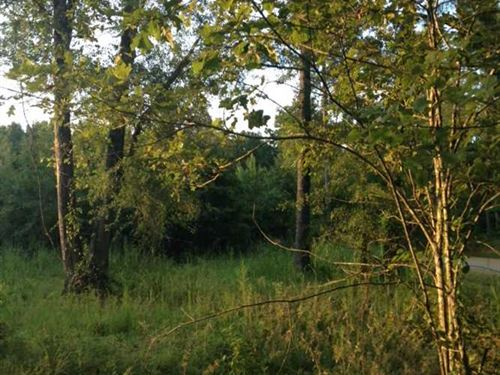 2 Acres in Madison County Located : Canton : Madison County : Mississippi