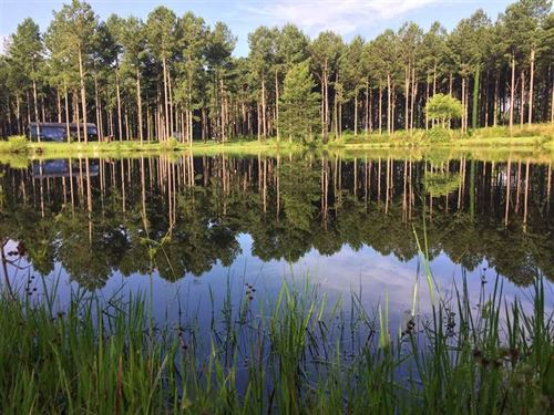 39 Acre Hunting, Recreational And : Carthage : Leake County : Mississippi