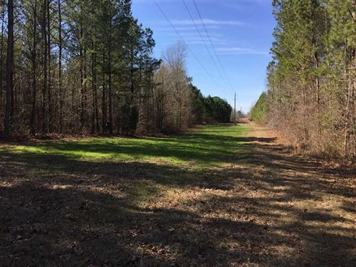 135 Acre Hunting, Recreational : Lawrence : Newton County : Mississippi