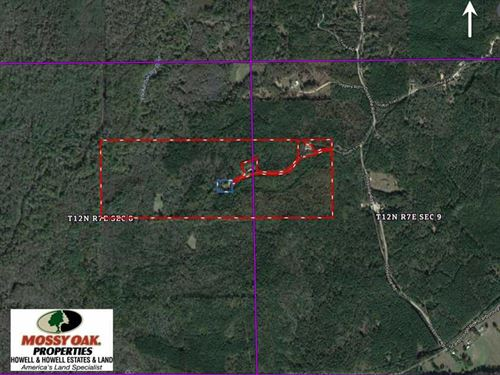 118 Acre Hunting, Recreational And : Carthage : Leake County : Mississippi
