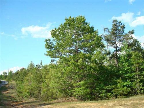 25.40 Acre, Tract 34, Mini-Far : Brandon : Rankin County : Mississippi